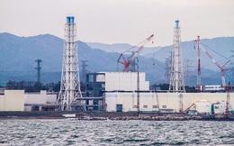 """Fukushima nhiễm xạ đến mức robot cũng phải """"chết"""""""