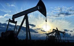 Giá dầu thấp có thể kéo dài 1 thập kỷ