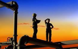 Tập đoàn Điện lực Việt Nam: Giá điện bán buôn sẽ tăng 5% trong năm 2016