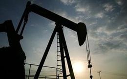 Fitch: Giá dầu sẽ ổn định trở lại vào cuối năm 2017