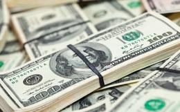 HSBC: Tỷ giá USD/VND sẽ tăng lên 23.000 đồng vào cuối năm 2016
