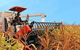 Công ty nông nghiệp của bầu Đức vừa mang nghìn tỉ đi mua lại công ty cao su từ 2 đối tác