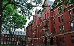 Tuyên bố mở đại học phi lợi nhuận thậm chí có thể mang về siêu lợi nhuận!