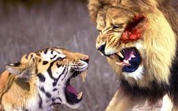 Việt Nam có thể là con hổ mới châu Á? Campuchia cũng vậy!