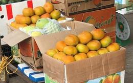 Sợ hoa quả Trung Quôc ngậm hóa chất, người Việt quay sang dùng hàng Thái và Úc