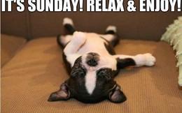 Gác công việc sang một bên, Chủ nhật là ngày để chúng ta hoàn toàn thư giãn và hạnh phúc