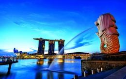 Startup Việt sang Singapore lập doanh nghiệp: 1 USD và 2 ngày