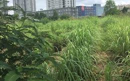 """Số dự án BĐS Phương Trang trải dài khắp Đà Nẵng, hàng loạt dự án bị """"cầm cố"""" ngân hàng"""