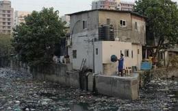 Ấn Độ: Nhà vệ sinh rất nhiều nhưng... vẫn bẩn