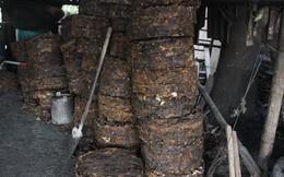 4,6 tấn mỡ trâu bò đang bốc mùi hôi thối suýt tuồn ra thị trường