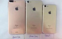 """iPhone """"mới"""" sẽ là iPhone 7, không phải iPhone 6SE và điều đó làm tôi thất vọng với Tim Cook hơn bao giờ hết"""