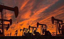 """Đề xuất """"múc"""" thêm 2 triệu tấn dầu để cứu tăng trưởng: Năm ngoái múc rồi, năm nay múc tiếp?"""