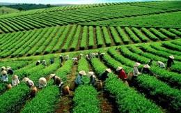 Việt Nam sẽ chi hơn 1,1 triệu tỷ đồng cho 21 chương trình mục tiêu