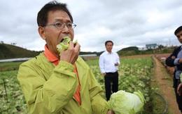 Mơ ước của nông dân Việt: Thu nhập 200.000 USD từ trồng rau sạch ăn ngay tại ruộng ở Nhật