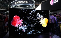 9/10 mẫu TV bán chạy tại Mỹ đều thuộc về ông lớn Hàn Quốc