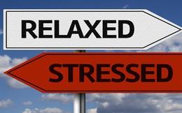 Làm thế nào để giảm bớt căng thẳng trong cuộc sống?