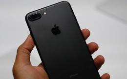 Vừa về Việt Nam: giá iPhone 7 Plus tăng tới 4 triệu vì cháy hàng, iPhone 7 giảm giá nhẹ