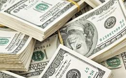 Tôi đã xin vợ 250.000 USD mua tên miền như thế nào