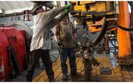 Thêm 3 công ty dầu Mỹ phá sản, giá dầu 45 USD/thùng vẫn không thể cứu vãn tình hình