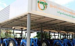 Myanmar nuôi tham vọng đứng đầu thế giới về xuất khẩu gạo