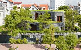 Ngắm ngôi nhà xanh từ ngoài vào trong cực ấn tượng ở Quảng Ninh của KTS Võ Trọng Nghĩa