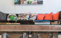 Nhìn những món đồ nội thất tuyệt đẹp trong nhà của nhiếp ảnh gia, bạn sẽ không nghĩ chúng được làm từ rác