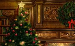 Nguồn gốc và ý nghĩa của cây thông trong ngày Giáng sinh?