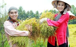 Bộ Nông nghiệp xin 96.000 tỷ đồng để tái cơ cấu, đảm bảo an toàn vệ sinh thực phẩm