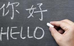 Việc biết 2 ngôn ngữ không hoàn toàn có lợi như bạn tưởng