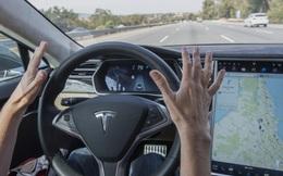 5 công ty sẽ thống trị thị trường xe tự lái