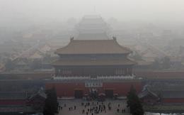 Gen siêu vi khuẩn kháng thuốc - ác mộng loài người đã xuất hiện ở ngay những thành phố lớn vì ô nhiễm không khí