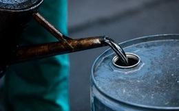 Giá dầu tăng vọt 21% nhờ Nga phát tín hiệu hợp tác