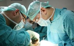 Những gì bạn có thể muốn biết về một cuộc cấy ghép... dương vật
