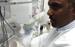 Phải 10 năm nữa mới có vaccine đặc chủng dành cho virus Zika