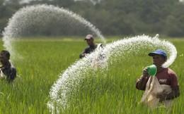 Bộ Nông nghiệp bêu tên 13 DN vi phạm sản xuất phân bón, phạt 3,8 tỷ đồng