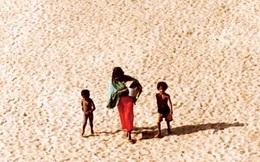 2/3 đất đai châu Phi bị sa mạc hóa