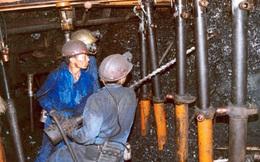 Việt Nam vỡ kế hoạch nhập khẩu than, vượt gấp 3 lần