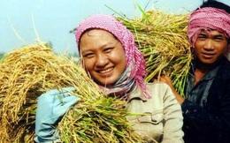 Giám đốc World Bank: Nông nghiệp Việt, đừng làm theo cách cũ nữa, tăng trưởng sụt giảm rồi
