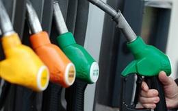 OPEC lục đục nội bộ, giá dầu tiếp tục giảm
