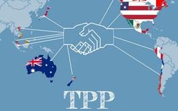 Không thông qua TPP: Mỹ chịu thiệt chứ không phải Việt Nam