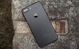 Apple giảm số lượng đơn đặt hàng linh kiện cho iPhone 7, báo hiệu doanh số sụt giảm