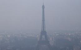 Vì điều tồi tệ nhất 10 năm này, Pháp buộc phải cấm xe cá nhân theo biển số toàn tại Paris