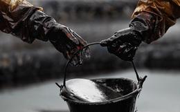 Nhìn giá dầu trong hơn 150 năm qua, liệu bạn có thể đoán được năm sau sẽ ra sao?