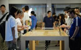Một công ty với 343 nhân viên đang nắm giữ chìa khóa giúp Apple tạo nên iPhone tốt hơn vào năm tới