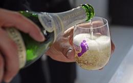 Làm thế nào mà cặp vợ chồng không kinh nghiệm, không tiền bạc này lại có thể trở thành chủ hãng rượu nổi tiếng nhất nước Mỹ?