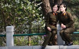 Những hình ảnh ít ai biết đến về cuộc sống người dân Triều Tiên