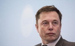 Liên tục được truyền thông tung hô, nhưng Tesla đã thu về được bao nhiêu? Đã tới lúc Elon Musk cần nói ra sự thật