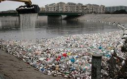 Phát hiện một loại vi khuẩn ăn nhựa có thể cứu hàng triệu bãi rác