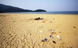 Vứt rác ra vỉa hè, vệ sinh cá nhân không đúng nơi quy định sẽ bị phạt 300.000 đồng