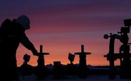 Hội nghị Doha thất bại, giá dầu sẽ lao dốc trong thời gian tới?